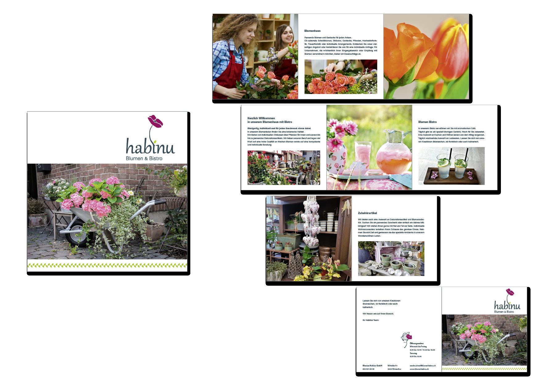Broschuere web